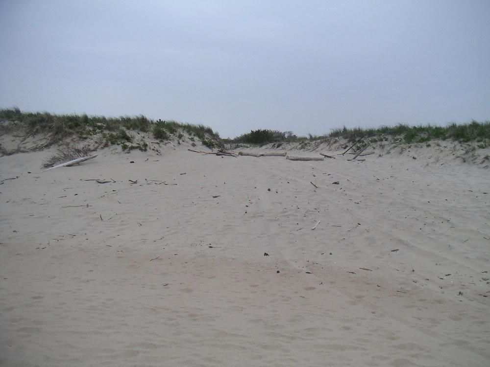 BEACH 1-15.JPG
