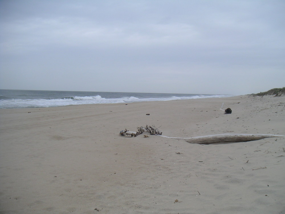 BEACH 1-16.JPG
