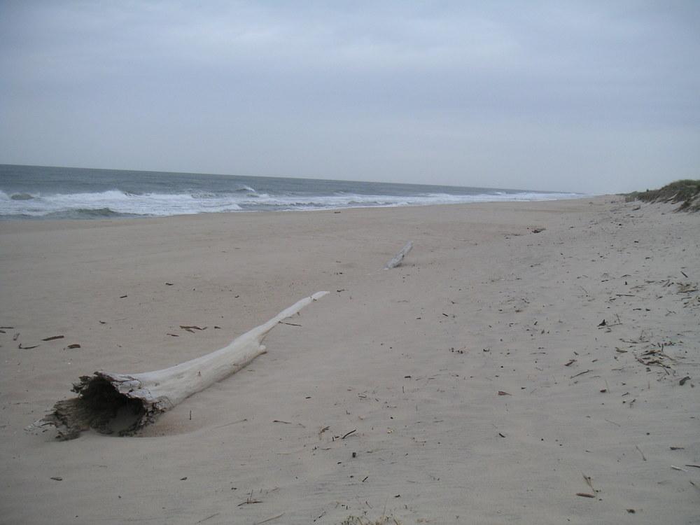 BEACH 1-17.JPG