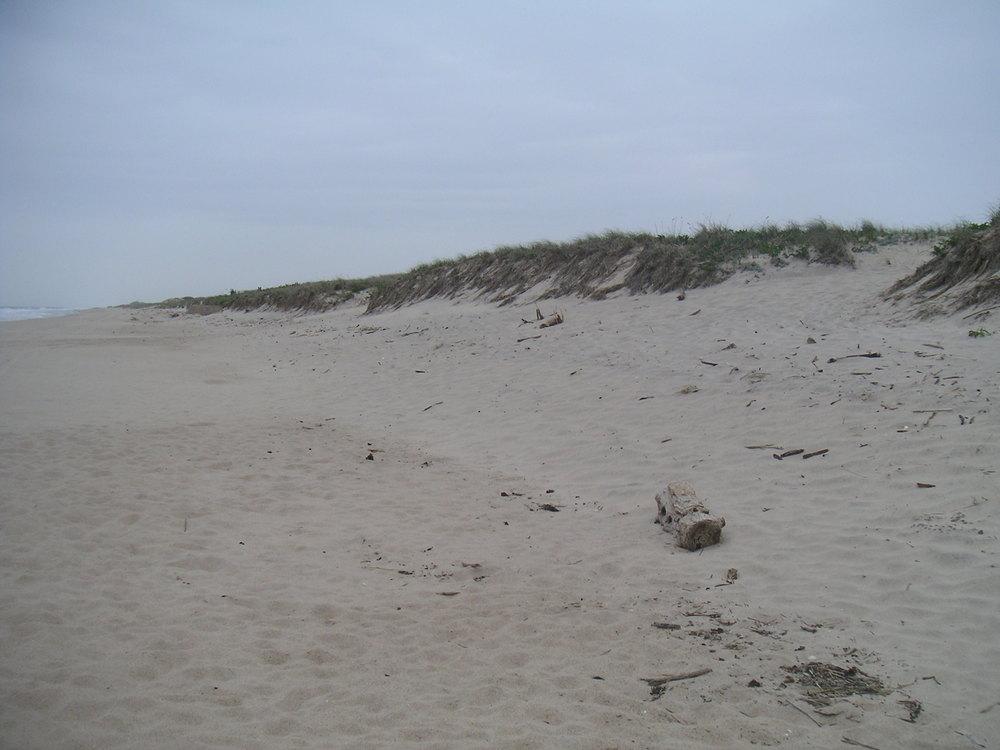 BEACH 1-18.JPG