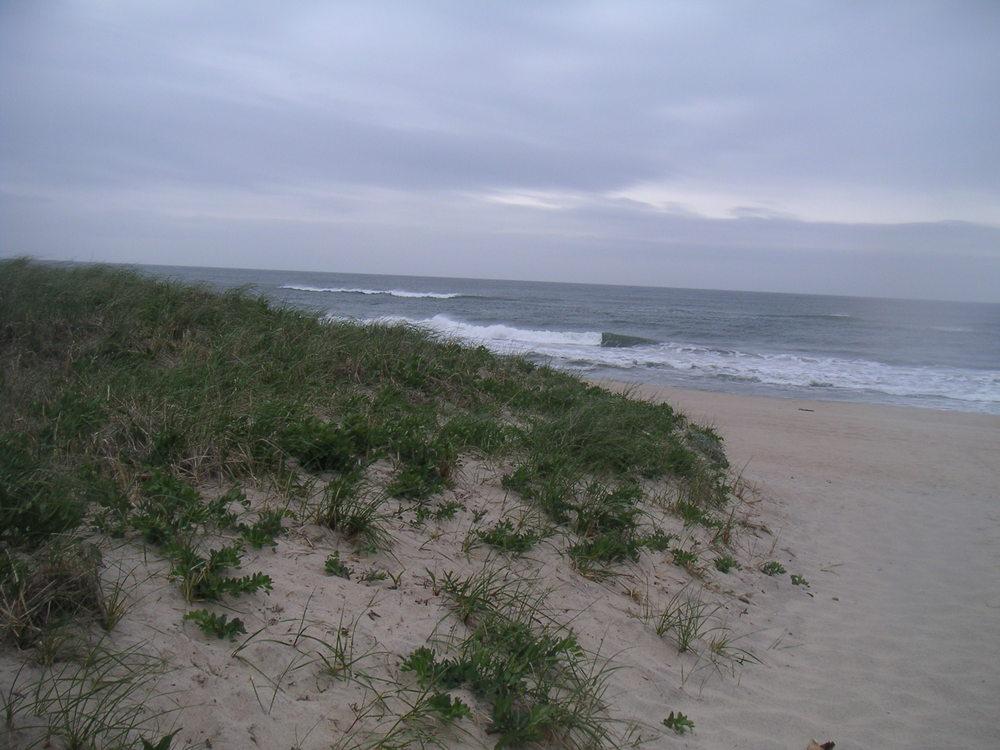 BEACH 1-20.JPG