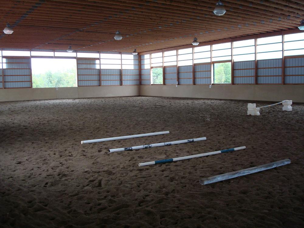 HORSES 4-08.JPG