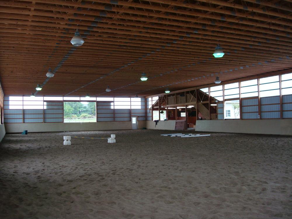 HORSES 4-11.JPG