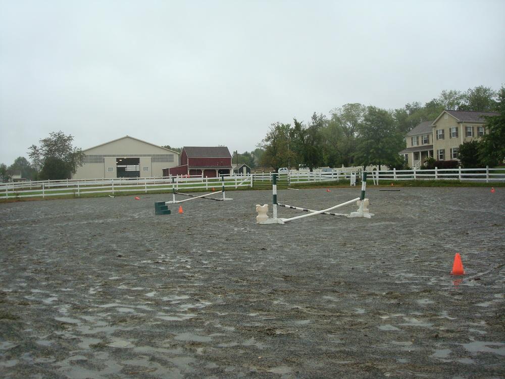 HORSES 4-21.JPG