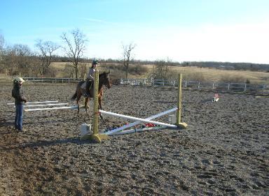 HORSES 6-07.jpg