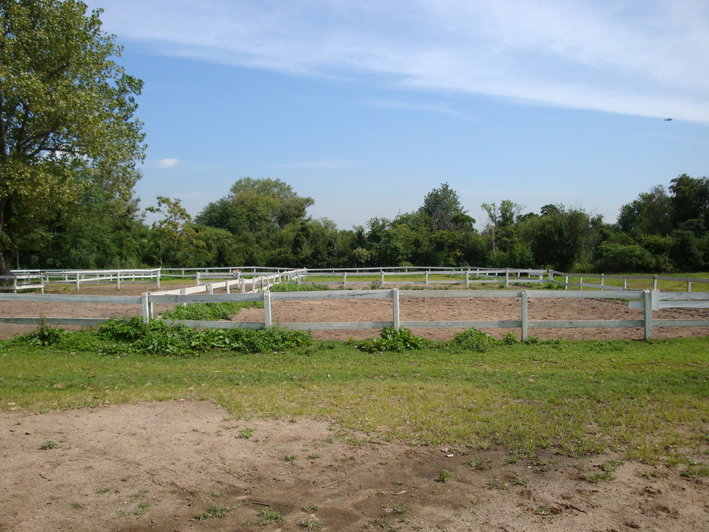 HORSE FARM 3