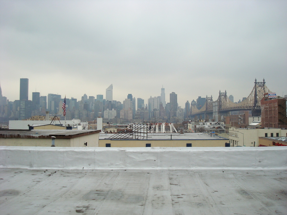 ROOF 29