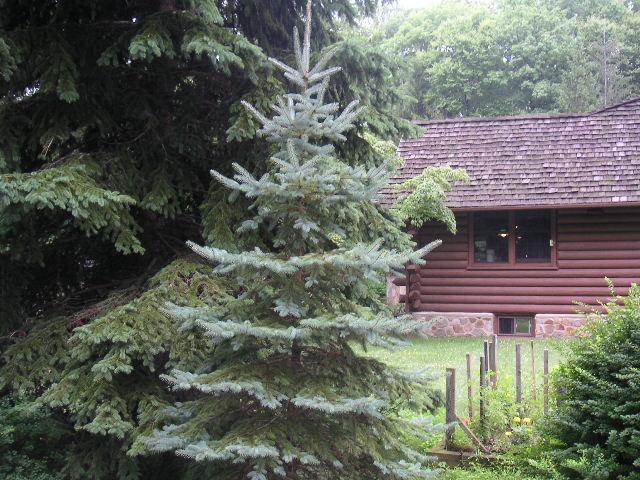 NJ HOUSE 1-35.JPG