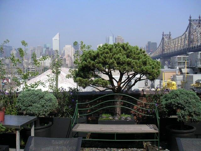 NYC LOFT 7-15.jpg