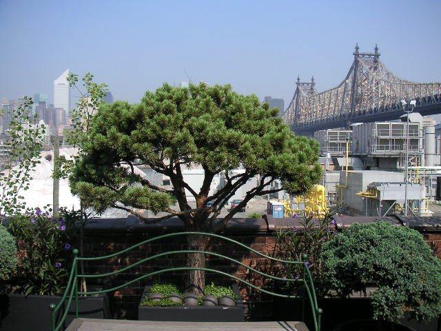 NYC LOFT 7-37.jpg