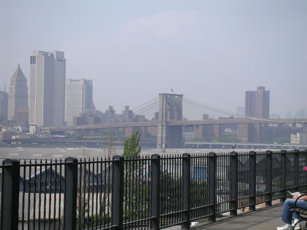 NY PARK 2-10.JPG