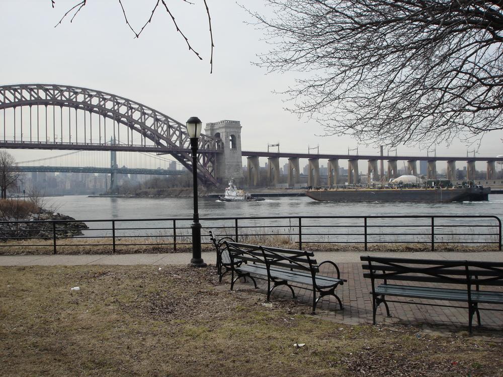 NY PARK 11-08.JPG