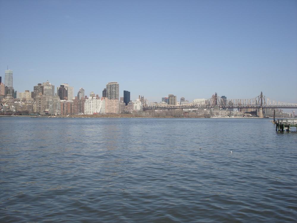 NY PARK 12-11.JPG