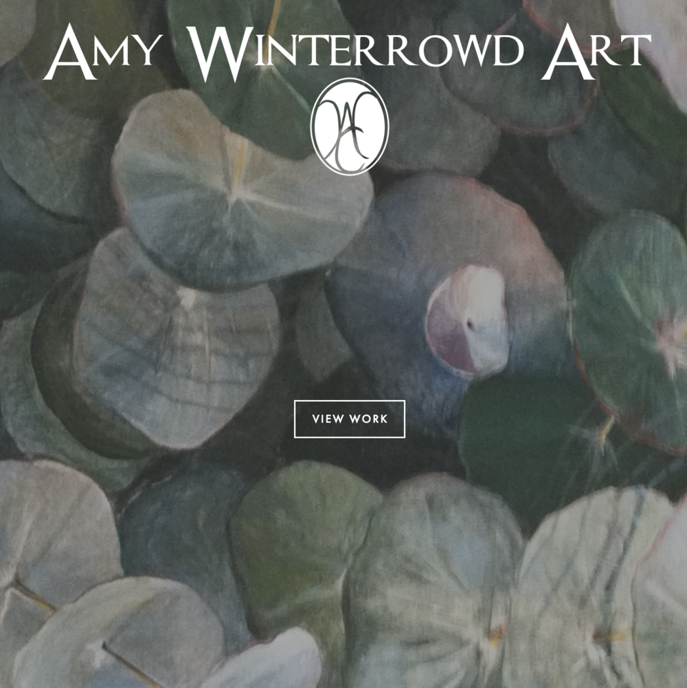 Website for Amy Winterrowd Art