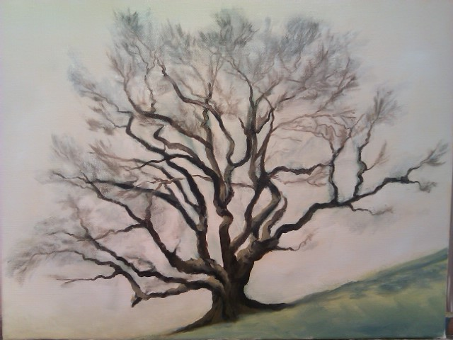Oak tree portrait. Trying out some new paints - and liking them!