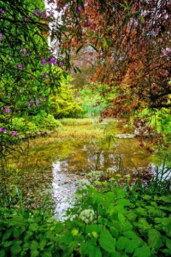 Stunning gardens at Westhope
