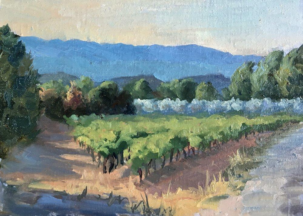 Vineyard, Les Bassacs
