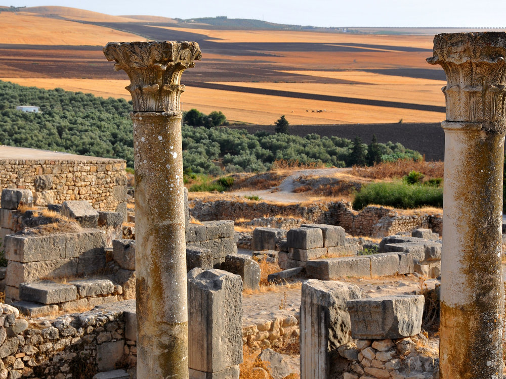 We'll take a day trip to the Roman ruins of Volubilis