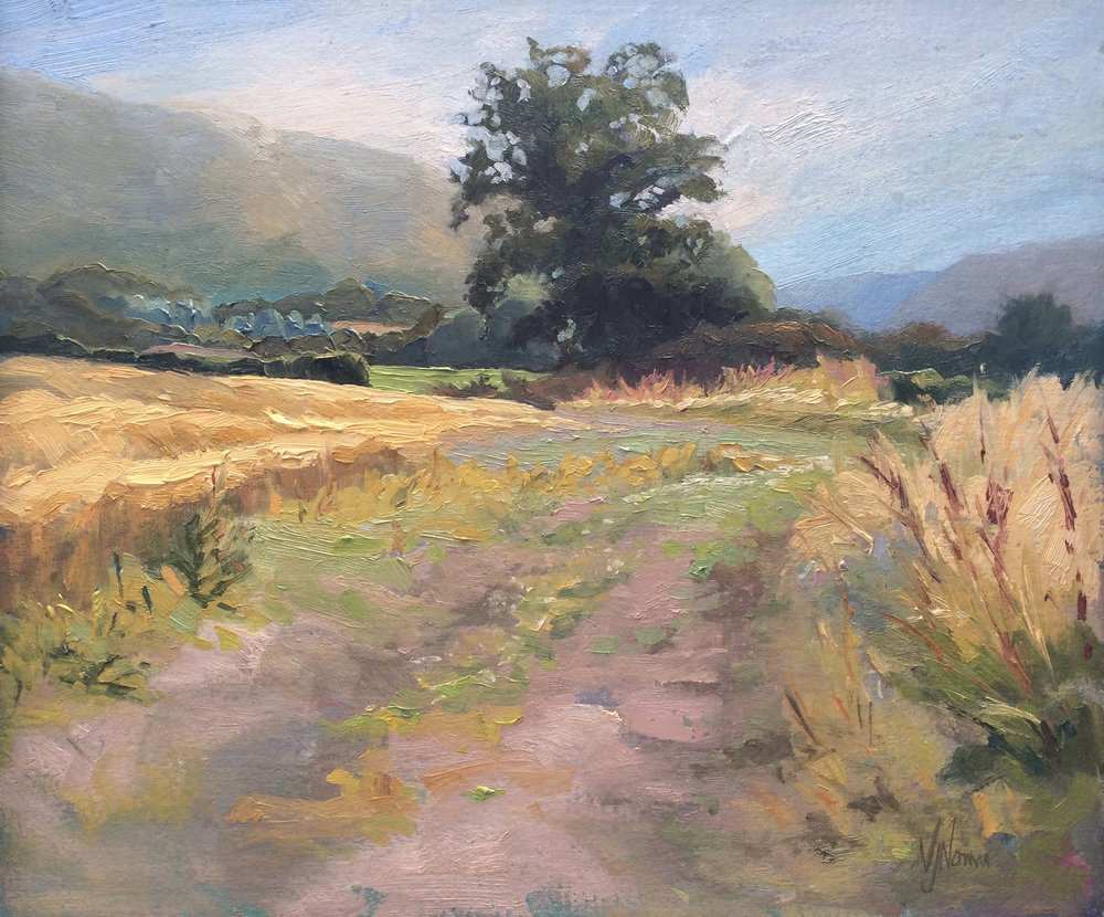 Fields below The Lawley
