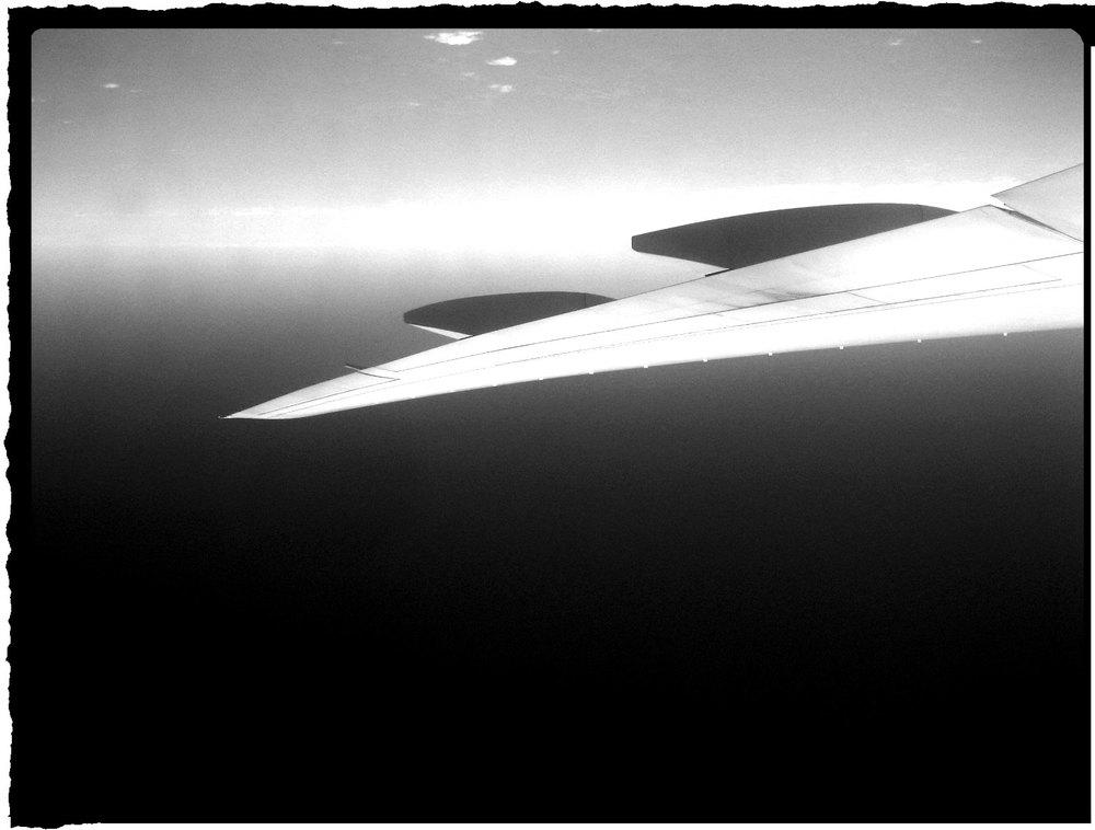 wing-WEB.jpg