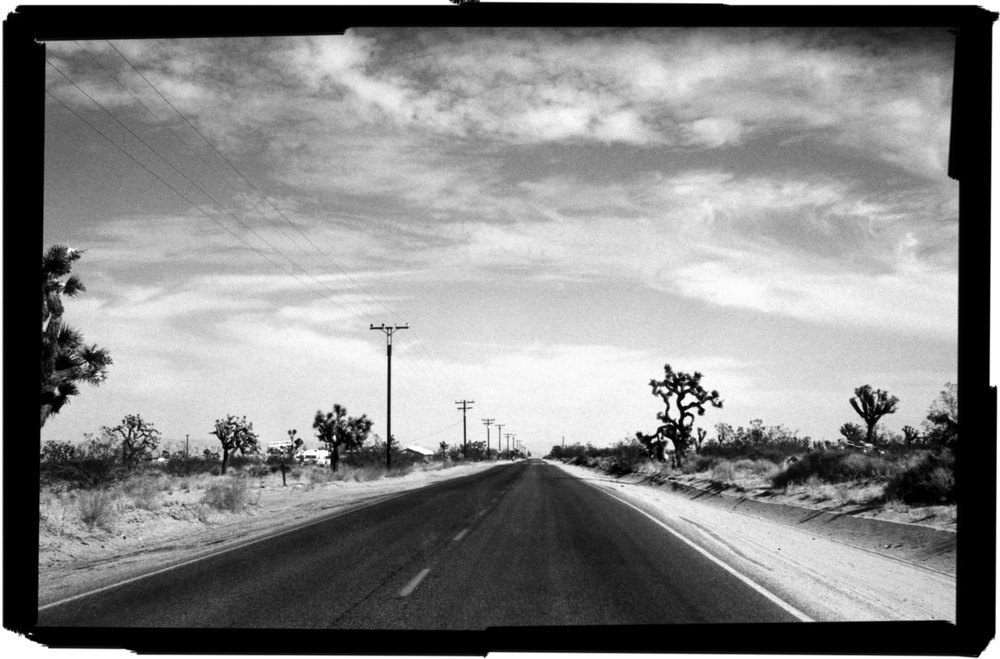 joshua-tree-road-WEB.jpg