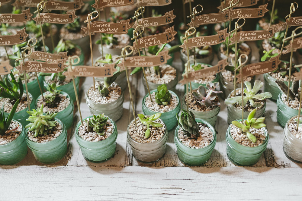Mike+Holly+Brandon_Werth_Acowsay_Cinema_Wedding_Favors_Succulents.jpg