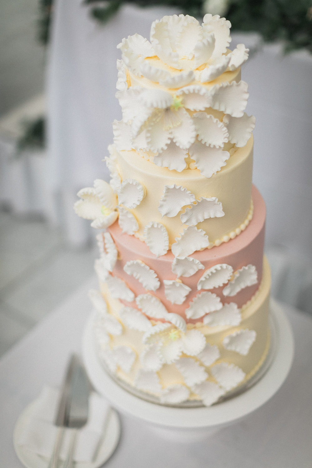 Wisconsin_Wedding_acowsay_Uttke_Photography_Cake.jpg