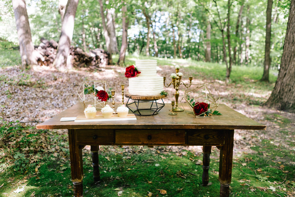 Allison_Hopperstad_Photography_Acowsay_Wedding_Dessert_Table.JPG