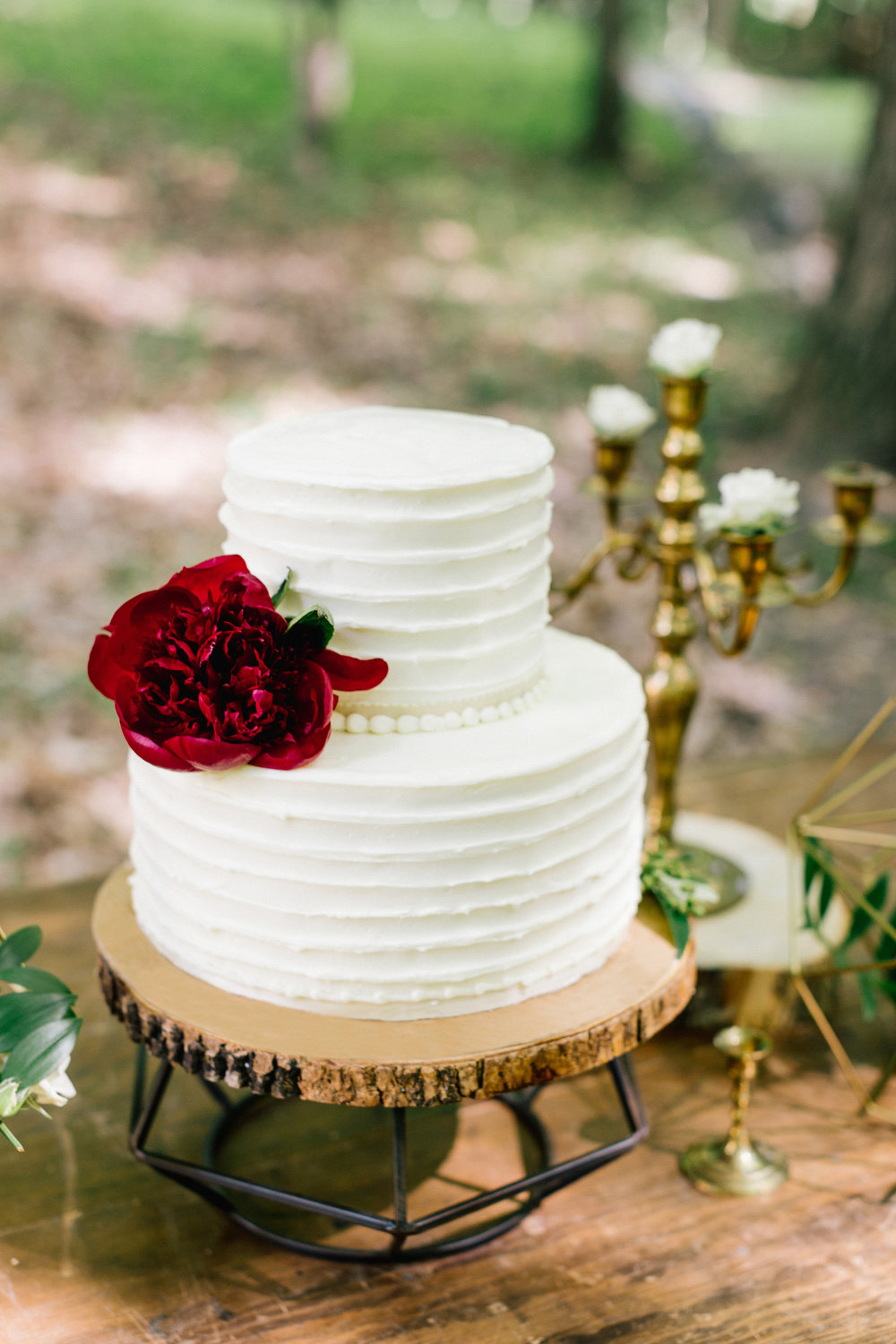 Allison_Hopperstad_Photography_Acowsay_Wedding_Cake.JPG