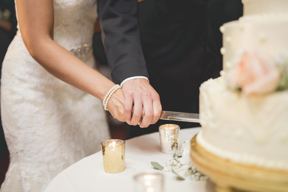 Joe_Jen_Photography_MN_Wedding_cake_cutting.jpg