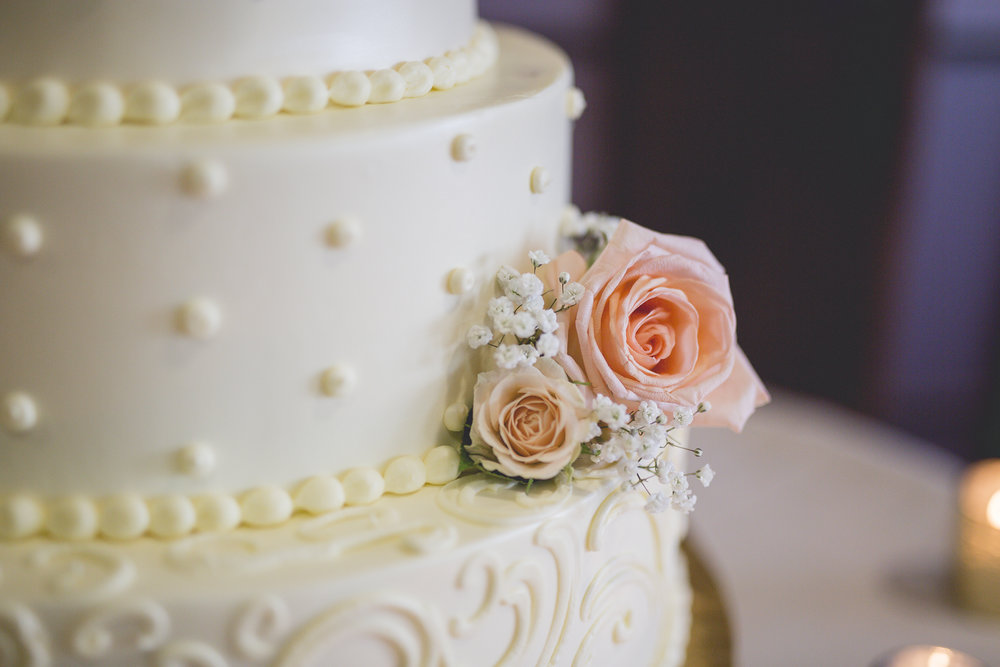 Joe_Jen_Photography_MN_Wedding_cake_2.jpg