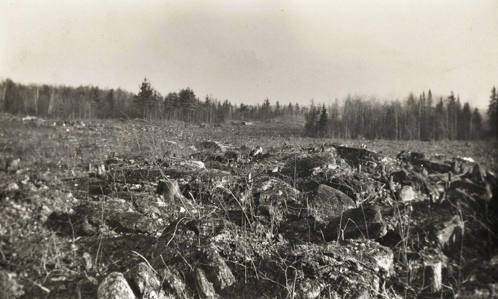 1951 Land clearing  Marmoraton Mine