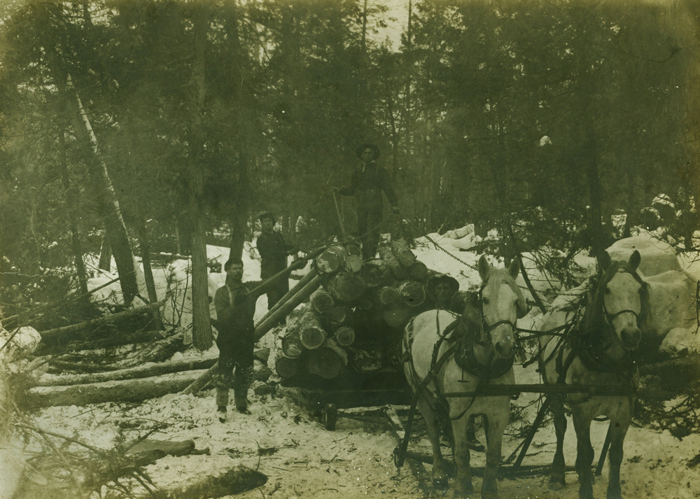 Pearce Lumber Camp