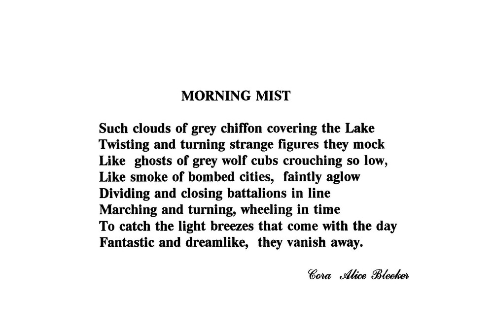 Morning Mist by Cora Bleecker.jpg