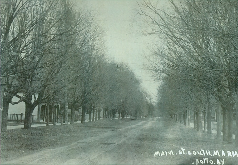 Forsyth Street looking south ,   c1918.jpg