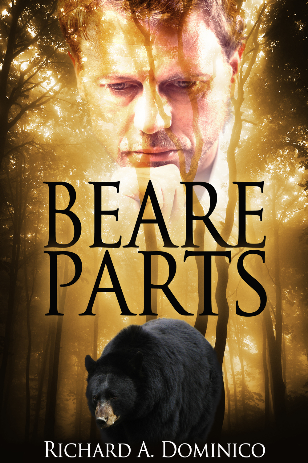Beare Parts cover.jpg