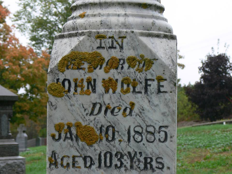 John Wolfe is Great,Great Grandfather of Maloneys, buried behind Catholic church 1782---1885.
