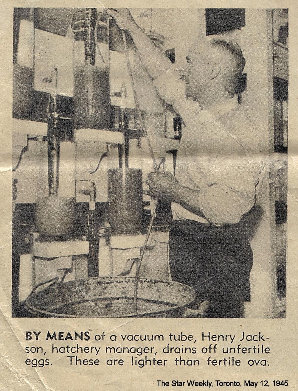 HenryJacksonHatchery2.jpg