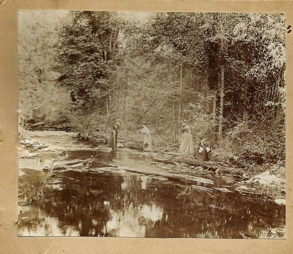 1897 Rawdon Creek, near Orchard Farms,Wellman's Corners.., Emily Parker, Lou Judd, Julia Pearce, Jane Pearce. Vandervoort