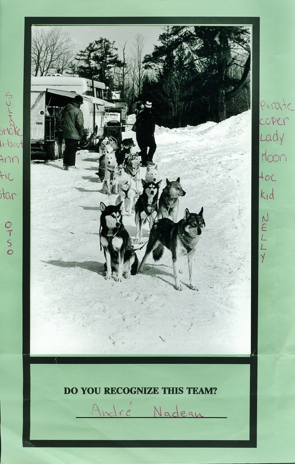 Snofest 1994 Dog team of Andre Nadeau.jpg