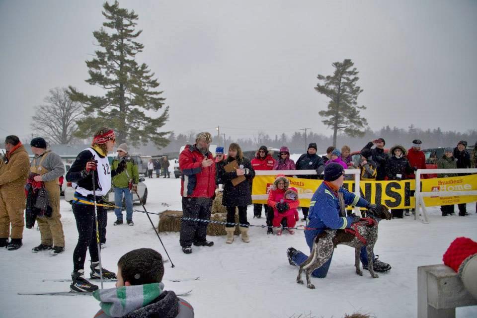 Snofest 2014 Skijoring.jpg