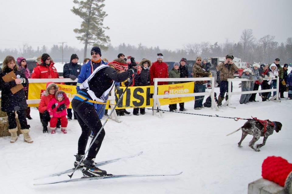 Snofest 2014 skijoring2.jpg