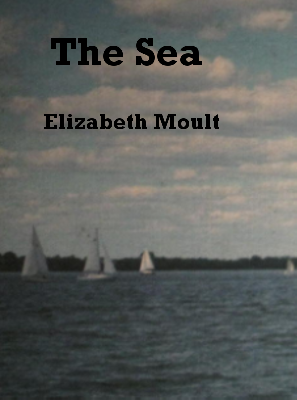 Two honeymooners on a sailing trip are separated and both are picked up by devious people. A tale of romance, drama, suspense and corruption. A short and easy to read story.