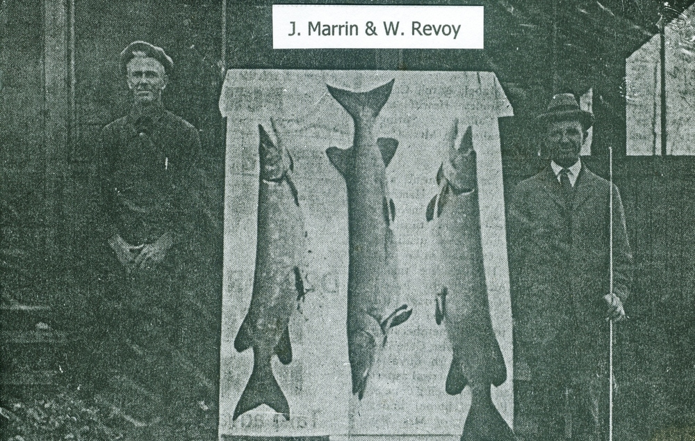 J. Marrin and William Revoy