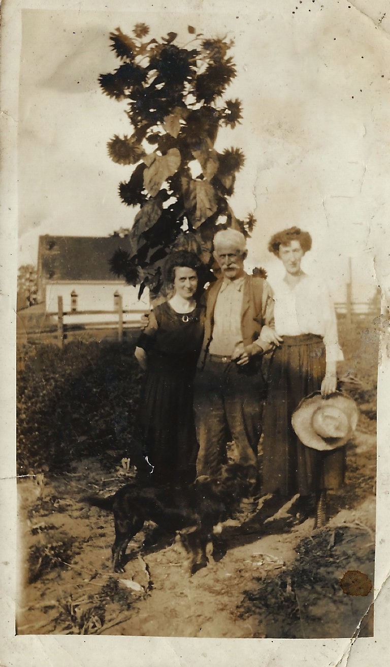 Elizabeth Tobin nee Rohan, John Minihane and Katie Meyers Rohan 1920s