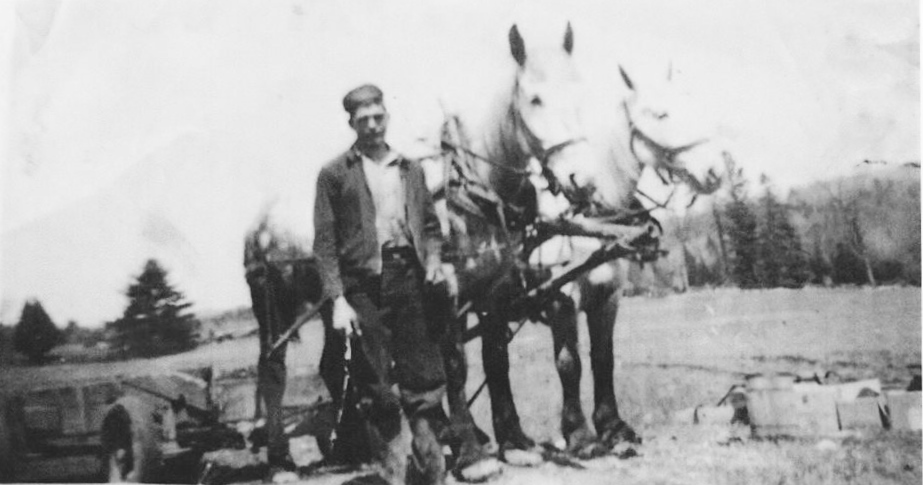 "Gail (Young) Gordanier  sent this photo,  adding""This photo is Frank Young (my dad) with a team of horses plowing the fields where the Mine pit was dug years later. He worked for the farmer who owned the land before the Mine existed. My dad worked at the Mine right up until the very last day of its closing."""