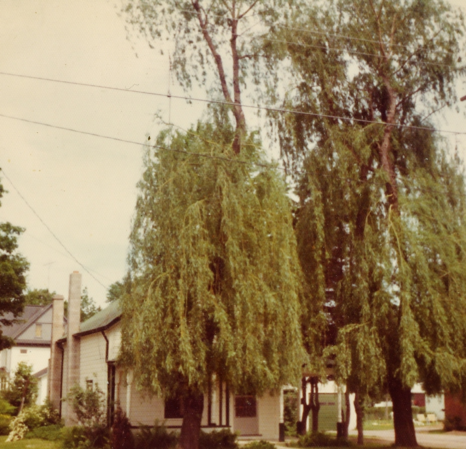 Jones - Home of Helen (Gaffney) Jones and Sally Jones, 46 Forsyth Sr., Marmorac.1970
