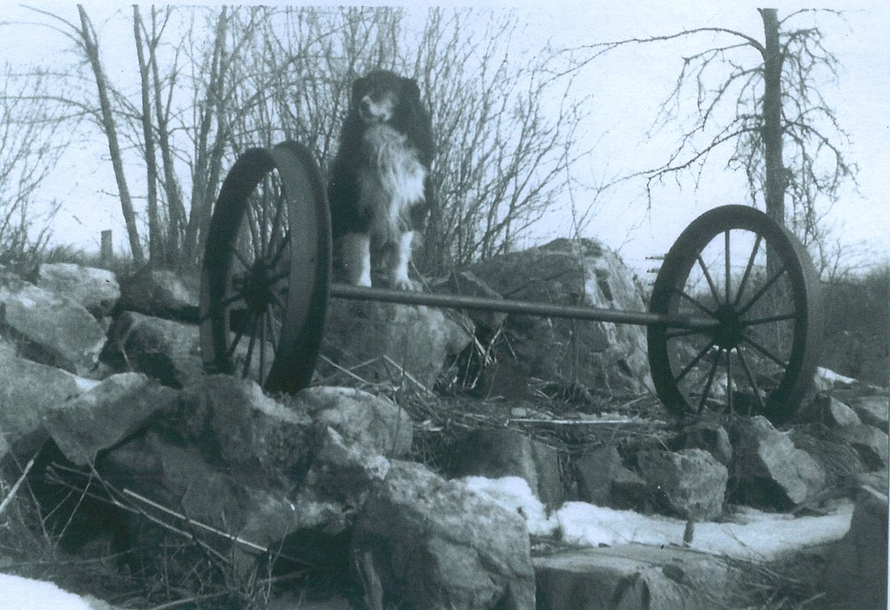 Aunger dog and wheels from blairton ore car