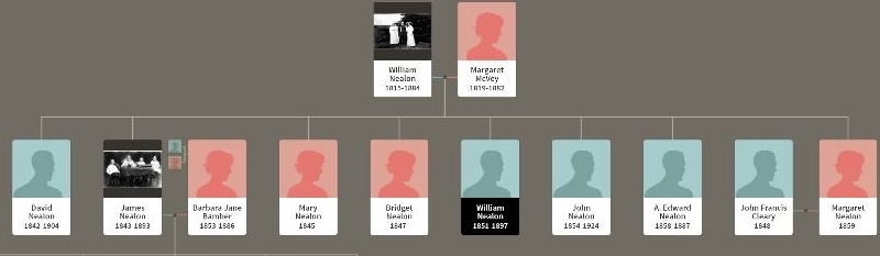 Wm Nealon family tree.jpg