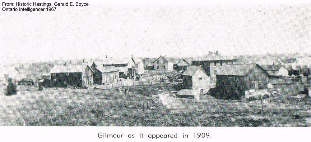 Gilmour (2).jpg
